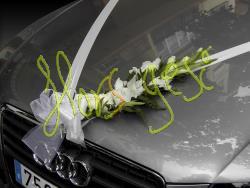 Decoracion coche 5