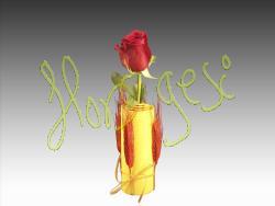 Rosa Sant Jordi 3