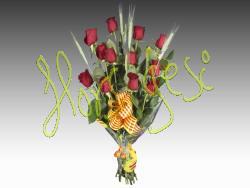 12 Rosas Sant Jordi