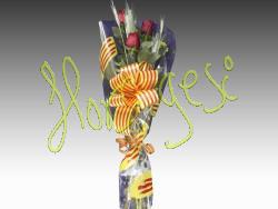 3 Rosas Sant Jordi