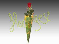 Rosa Sant Jordi 8