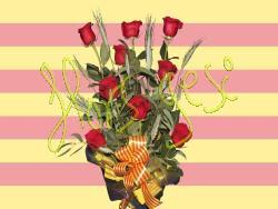 Centro 9 rosas sant jordi