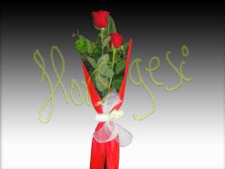 Dues roses